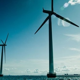 Protect Marine Life With Smart Offshore Wind