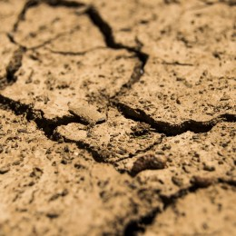 Protect Millions of People From Devastating Climate Change