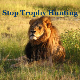 Stop-Trophy-Hunting