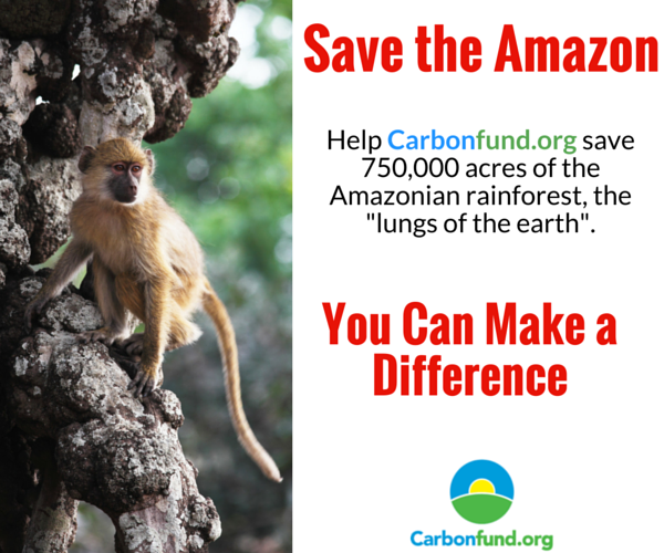 CarbonFund.org Landing Page