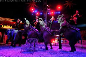 Circus DirkJan Ranzijn