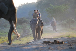 Elephant-ride by-Pragyan-Dowerah