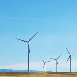 Stop Republicans from Rejecting Renewable Energy