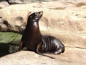 Sea Lion Quadell