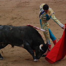 Ban Barbaric Bullfighting and End Torturous Execution for Entertainment