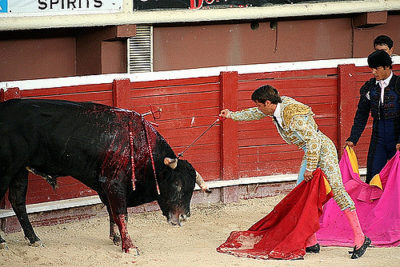 bullfighting_stevendepolo