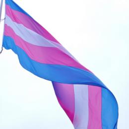 Applaud Declassification of Transgender People as Mentally Ill