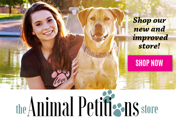 Shop and feed shelter animals