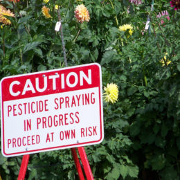 EPA: Ban Dangerous Pesticide That Causes Birth Defects