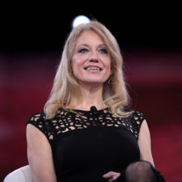 Kellyanne Conway: Explain Ignorant Medicaid Jobs Comment