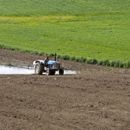 Ban the Use of Toxic Pesticides