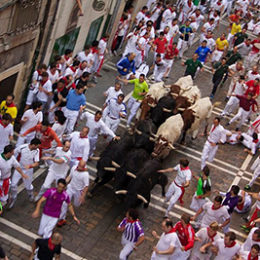 Permanently End Violent 'Running of the Bulls' Festival