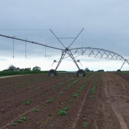 End Deadly Water Shortages Affecting Small Farmers