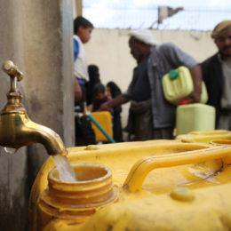 Save Yemen's Children from Deadly Cholera Outbreak