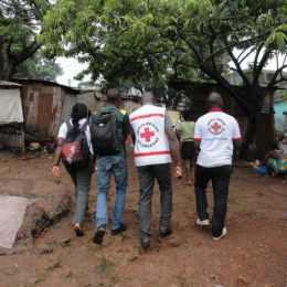 Find and Fire Red Cross Staff Who Stole $6 Million
