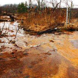 Don't Bring Back Toxic Sulfide Mining