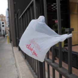 Stop Texas From Making Plastic Bag Bans Illegal