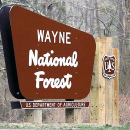 Don't Destroy National Forest With Harmful Fracking