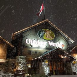 Bass Pro Shops: Stop Selling Assault Weapons