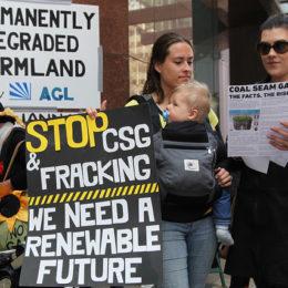 Drop Lawsuit Against Environmental Activists