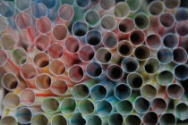 Protect the Ocean: Ban Plastic Straws