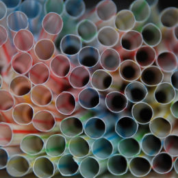 Protect the Ocean: Ban Plastic Straws