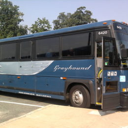 Greyhound Lines: No More Immigration Agents on Board
