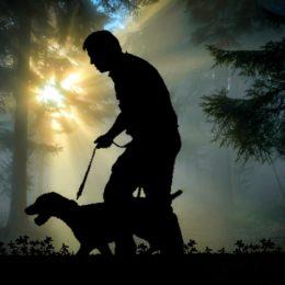 Punish Man Who Kicked Leashed Dog Twice on Walk