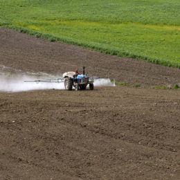 Applaud Hawaii on Deadly Pesticide Ban