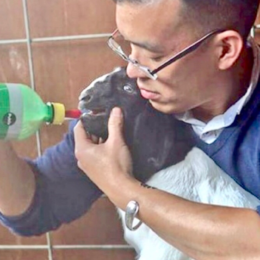 Don't Sentence Rescued Baby Goat to Death