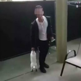 Rabbit Dropped Off Balcony and Thrown at Ceiling Deserves Justice