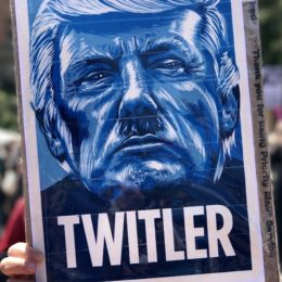 Protest sign showing Donald Trump as Hitler, with the caption Twitler